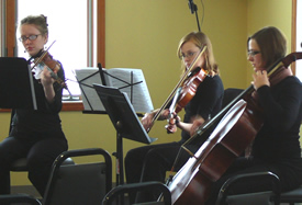 Musician Groups - String Trio